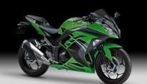 ninjaj300se14-green