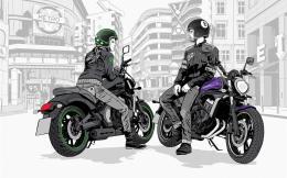Vulcan S schwarz vio